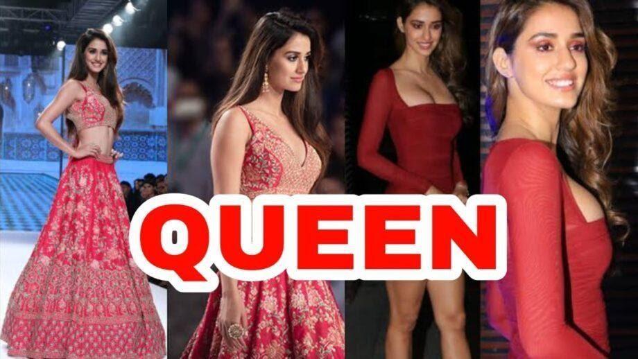 Disha Patani new Bollywood Sensation